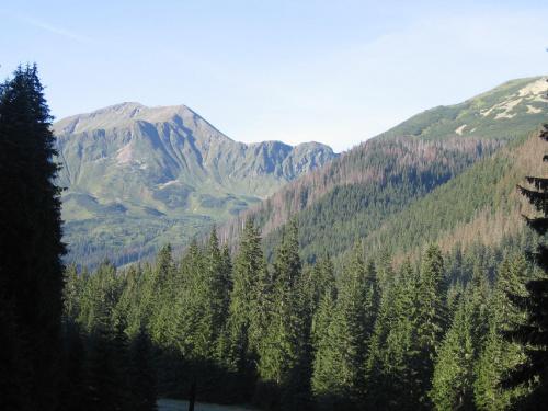Błyszcz i Bystra z przed schroniska. #Góry #Tatry #StarorobociańskiWierch