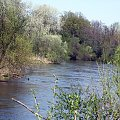 PZK #zielone #wiosna #rzeka #pilica #warka #okolice