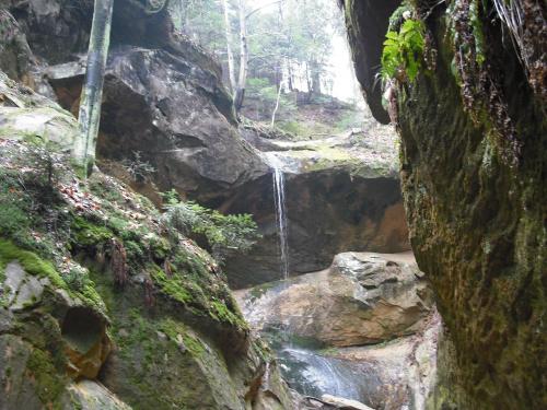 Ciężkowicki wodospad. #przyroda #wodospad