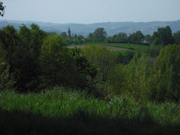 okolice Tuchowa.