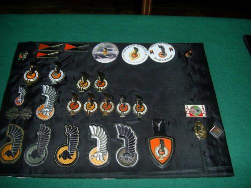 Emblematy i odznaki. #Militaria #Modelarstwo