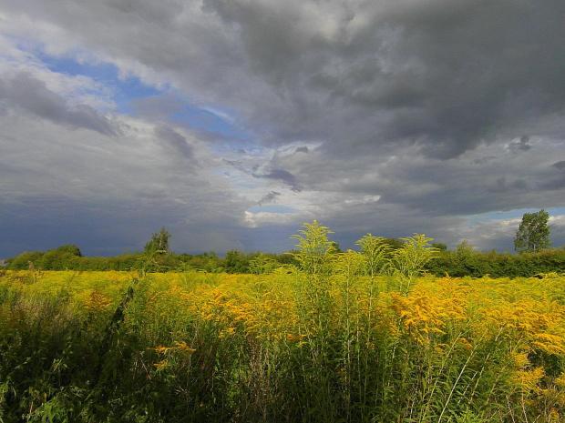 #chmury #łaki #niebo #zachod