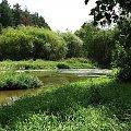 Rzeka Warta - Mstów. #Warta #rzeka #krajobrazy