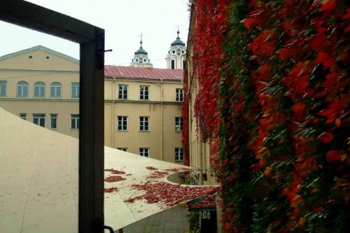 Widok na starówkę Wilna_wierze kościoła św. Katarzyny #Wilno