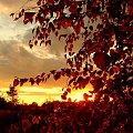 zachody moje ukochane #slonce #zachod #niebo #chmury #kolory #jesien