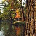 Park Szczytnicki #jesień #ParkSzczytnicki #rzeka #woda #Wrocław