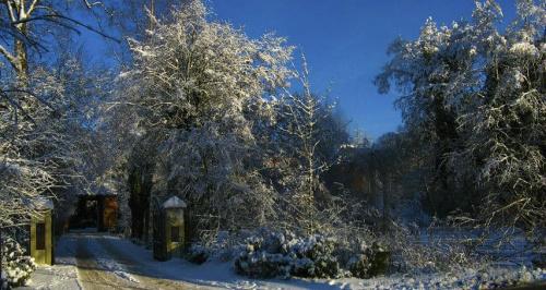 Na pozegnanie zimy... mam nadzieje ze nas uslyszy:) #evasaltarski