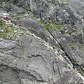 #KoziWierch #KoziaPrzełęcz #OrlaPerć #Tatry