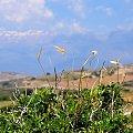 #Kreta #Matala #góry