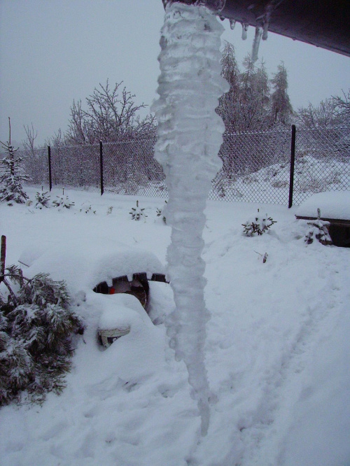 Zima napadła. I mocno zmroziła i oblodziła. 11.01.2010. Osiek k/Olkusza.
