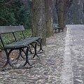 Aleja zmęczonych #Warszawa #ŁazienkiKrólewskie #park