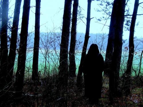 leśna szamanka