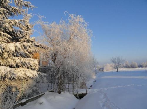 Zimowo-baśniowo :) #ZIMA