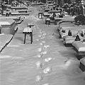 #droga #ścieżka #cmentarz #obraz