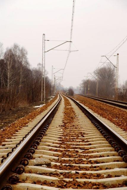 http://images46.fotosik.pl/656/968f4ae93792b71b.jpg