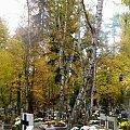 Jesień na cmentarzu tak samo urokliwa #ŚwiętoZmarłych #NaCmentarzu #jesień #listopad