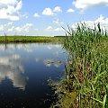Rozlewisko. #krajobraz #Podlasie #przyroda #woda #rzeka